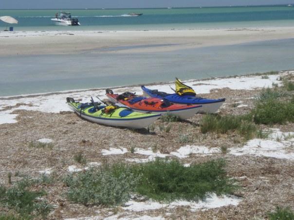 Our Yaks on the Beach